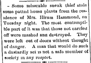 PostvilleReview29May1893Hammond.jpg